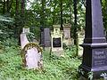 Jüdischer Friedhof Erlangen Juli 2010 07.JPG
