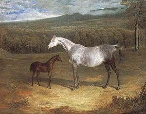Jack Spigot - Jack Spigot as a foal with Faucet's mare in a painting by John Frederick Herring Sr. (c. 1818).