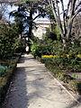 Jardín Botánico de Madrid en febrero (16670265805).jpg