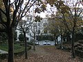 Jardins de la casa Alegre de Sagrera (III).jpg