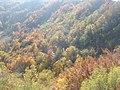 Jesen na Ljubini - panoramio.jpg