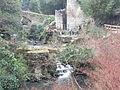 Jesmond Dene Mill 1160.JPG