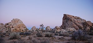 Joshua Tree National Park - Cyclops and Pee Wee Formations near Hidden Valley Campground at dawn
