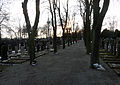 Juedischer Friedhof Mannheim 07 fcm.jpg