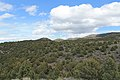 Jumbo Grade Trail - panoramio (23).jpg