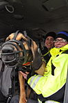 K9 Search and Rescue train with RI National Guard 150320-A-FR455-038.jpg