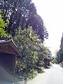 Kamidehirakimachi, Otsu, Shiga Prefecture 520-0061, Japan - panoramio.jpg