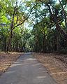 Kannavam - Road to Peruva.jpg
