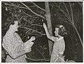 Kapiti Island - Mrs. Lindsey (caretaker's wife) and daughter feed the Kaka with dates.jpg