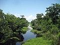 Kenta Canal Barataria Preserve.jpg