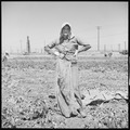 Kern County, California. Migrant youth in potato field. This is a characteristic costume of women in the potato... - NARA - 532140.tif