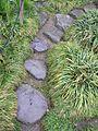 Kew Gardens 0556.JPG