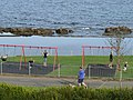 Kids on swings - geograph.org.uk - 1461857.jpg