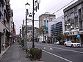 Kiryu - panoramio - kcomiida (29).jpg