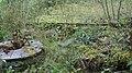 Kissakosken ruukki Säyneinen mylly 25.jpg