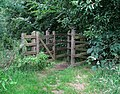 Kissing gate, Minnowburn Path - geograph.org.uk - 1407361.jpg
