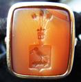 Korwin signet-ring1.PNG