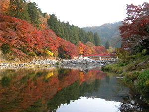 Aichi Kōgen Quasi-National Park - Kourankei, Mt.Iimori, Tomoe river, and Taigetsukyo bridge.