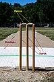 Krikettkapu.jpg