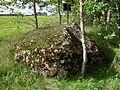 Kultusekivi, Mustmätta küla Lääne (2), 2011, regnr 9070.jpg