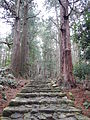 Kumano Kodo pilgrimage route Daimon-zaka World heritage 熊野古道 大門坂38.JPG