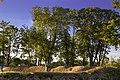 Kuressaare - panoramio (20).jpg