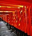 Kyoto Schrein Fushimi-Inari-taisha Torii 15.jpg
