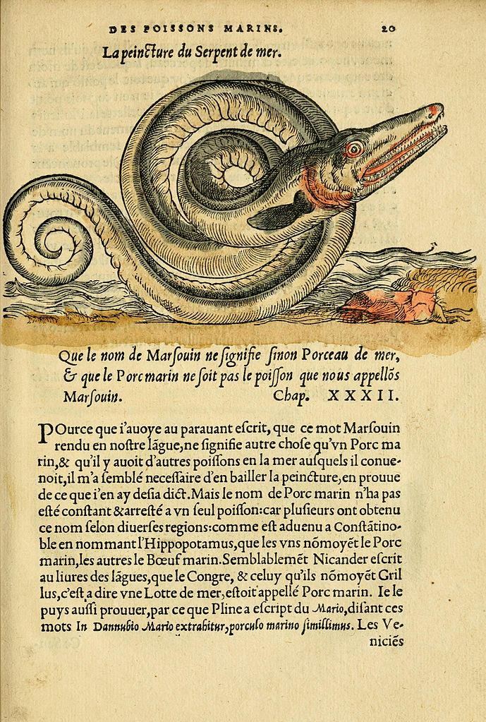 File l 39 histoire naturelle des estranges poissons marins for Histoire des jardins wikipedia