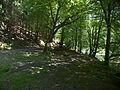 LSG Thüringer Wald Der Rastplatz am Schweizerhaus Schwarzatal DE-TH.jpg
