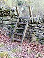 Ladder stiles on footpath towards Cefn Rhydd - geograph.org.uk - 1376319.jpg