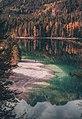 Lago di Tovel in autunno, Parco Naturale dell'Adamello Brenta.jpg