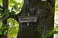 Landschaftsschutzgebiet Solling - Am Bussberg bei Ertinghausen - Hinweisschild (2).jpg