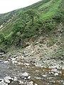 Landslip - geograph.org.uk - 200117.jpg