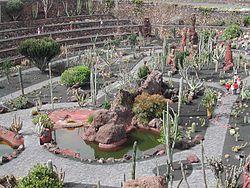 Lista ver botaniska tr dg rdar wikipedia - Jardin de cactus madrid ...