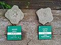 Le centre du parc national de Etsaut à mis en place un parcourt permetant de reconaitre les traces des animaux avec un affichage en braille à Etsaut vue 5.jpg