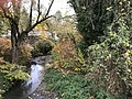 Le cours d'eau Toison à Villieu, commune de Villieu-Loyes-Mollon (Ain, France) en novembre 2017 - 2.jpg