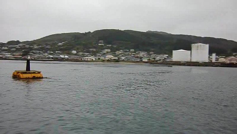 Ferry From Bluff Nz To Stewart Island