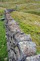 Lichen covered wall near Gorple Gate - geograph.org.uk - 1060471.jpg