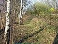 Lijn 30 - panoramio - Jan Uyttebroeck.jpg