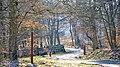 Lillesø vejen i tidlig forår - panoramio.jpg