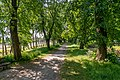Lindenweg Elze-9491.jpg