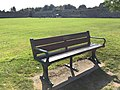 Long shot of the bench (OpenBenches 1624-1).jpg
