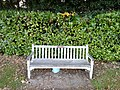 Long shot of the bench (OpenBenches 3028-1).jpg