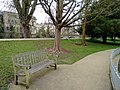 Long shot of the bench (OpenBenches 5540-1).jpg