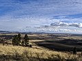 Looking out over the Palouse, October 2017 (1).jpg