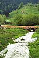 Lumenjtë e Rugovës.jpg