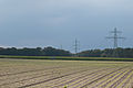 Möhrenfeld südlich von Annendaal II.jpg