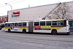 MAN Articulated Trolley Bus.jpg