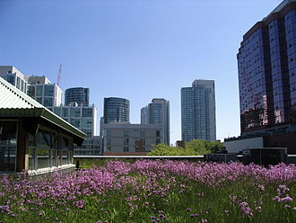 Reconciliation ecology - Green roofs can help maintain species diversity in urban landscapes.
