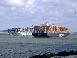 MSC Pamela & Cosco Seattle pic2 at Prot of Rotterdam, Holland 29-Jul-2007.jpg